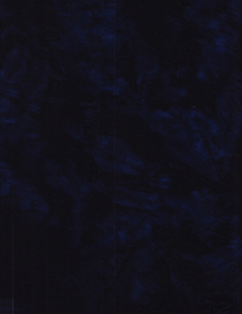 Lava Solids 100Q-1565 Blackberry