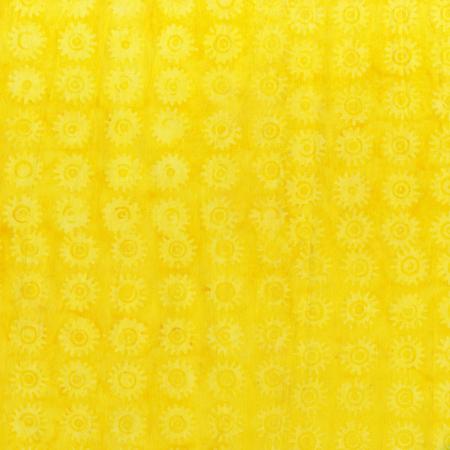 Anthology 2005Q-5 Yellow