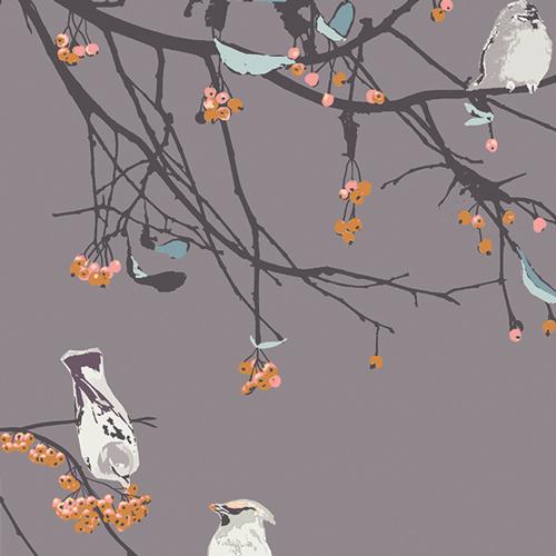 Bird Songs Sun