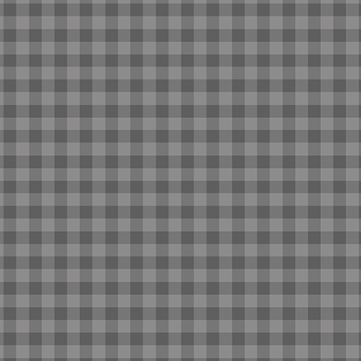 CONTEMPO WARP & WEFT Gingham Gray 6607Y-08