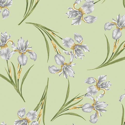 Magnificent Blooms Iris Sage - 6783-40