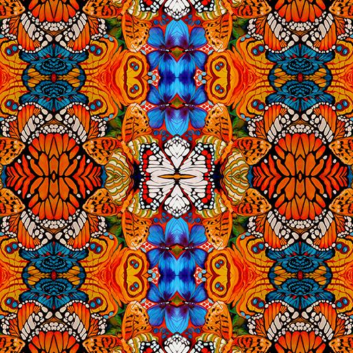 Metamorphosis Orange/Multi