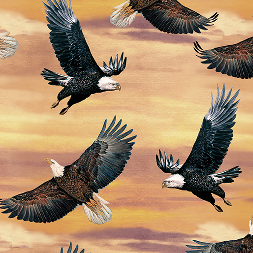 Eagles and Sky Sunset