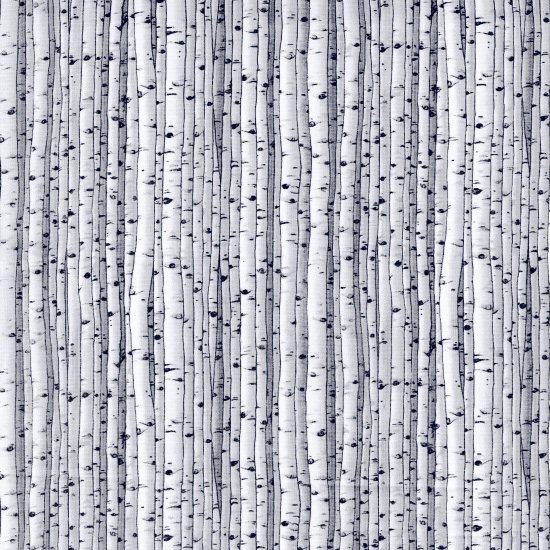 5065-90 Natural Treasures II - Birch Trees