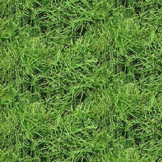 Natural Treasures II - green grass