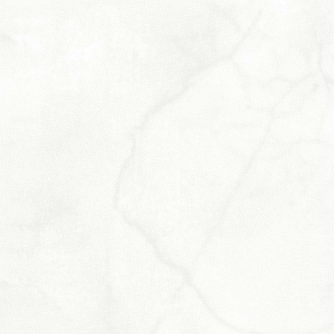 9195-01 White