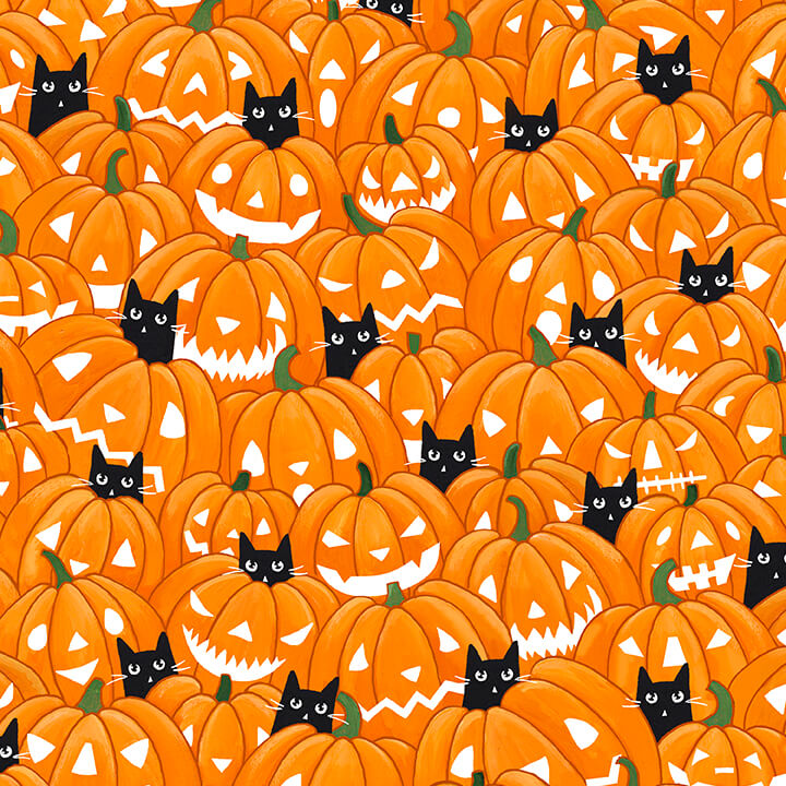 Soadoraboo Orange Punkins designed by Ryan Connors