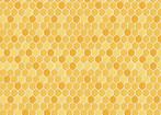 For the Love of Bees - Honey Honey