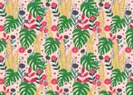 junglemania - Sansevieria Pink