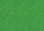 Sigrid/Green: Junglemania
