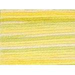 DMC Floss Color Variations - 4080