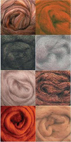 Wool Roving AsstEarth