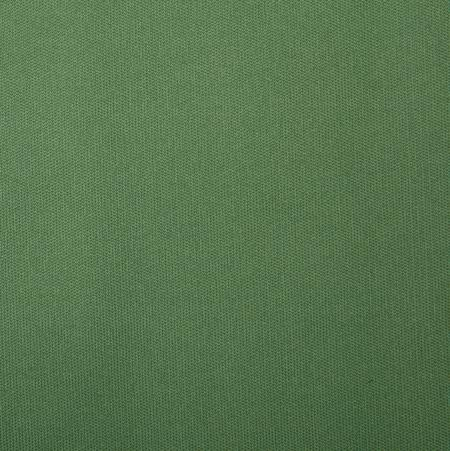 Boy Solids Fabric Green