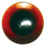 Brown Novelty Eye Button  - 1666DB