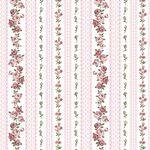 Amy-Roses-Roses Lace Stripe SoftRose