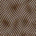 Quilters Coordinates-Wavy Dots Brown