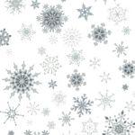 Christmas Wonders White Silver Snowflakes
