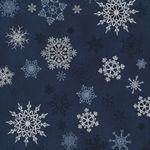 Christmas Wonders Blue Silver