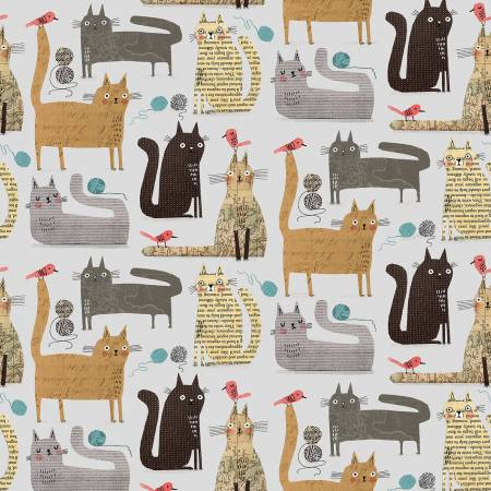 It's Raining Cats and Dogs - Contempo Studio - Gray Cats at Play