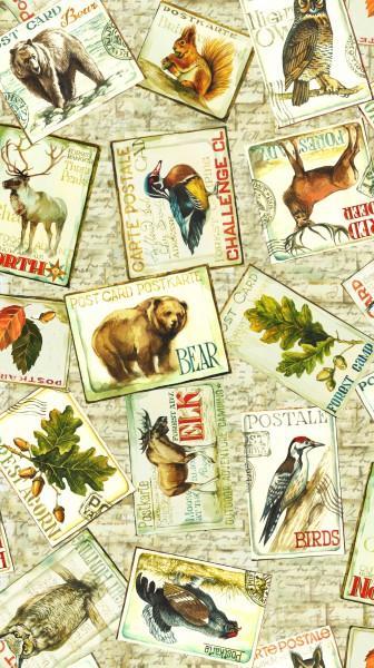 Cream Postcards