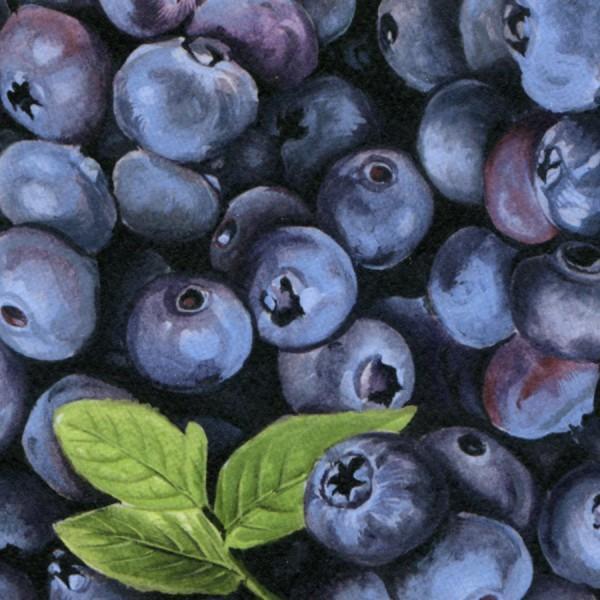 Farmer John - Blueberries - Food