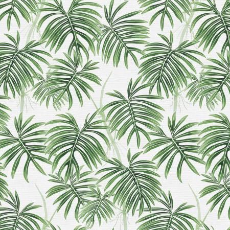 Modern Botanicals Radiatum Green