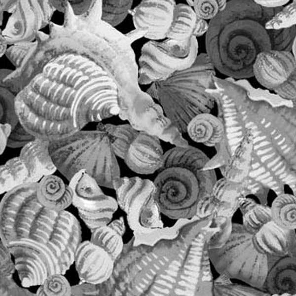 Coral Sea 120-7942 Greyscale Seashells