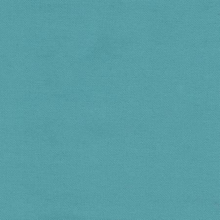 James Thompson 9.3oz Duck Canvas in Caribbean Sea