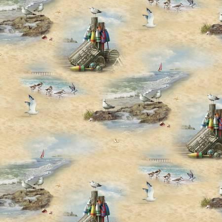 Sand Coastal Dream Scenic
