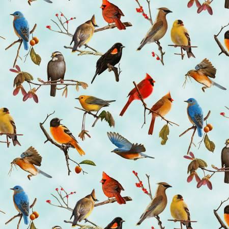 Blue Assorted Birds