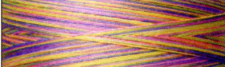 Superior So Fine! Variegated Poly 40wt 1675yd Little Joeys - 142-02-730