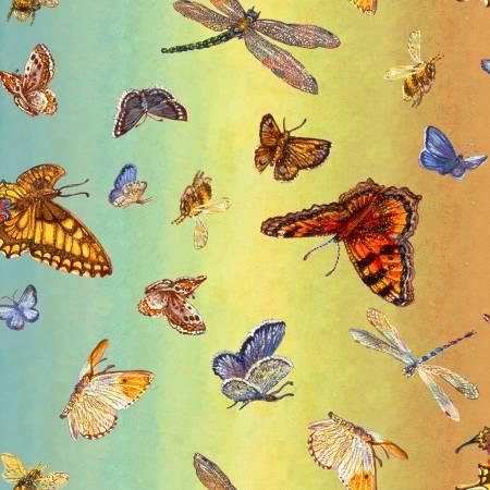 Multi Butterfly Ombre