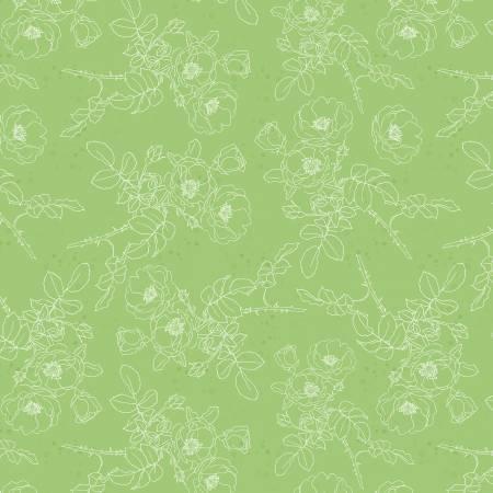 Green Paris Toile