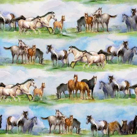 Sunflower Stampede Horse Field