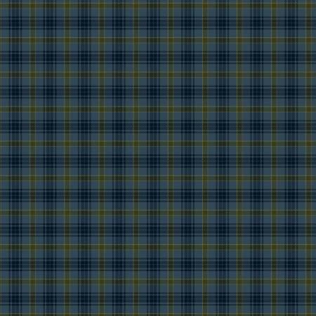Blue Printed Plaid on Flannel