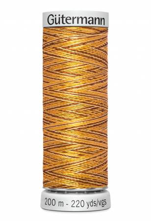Dekor Rayon Embroidery Thread Variegated 200m/219yds Butternut