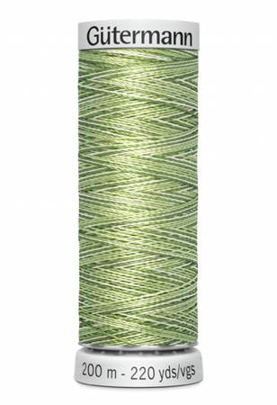 Dekor Rayon Embroidery Thread Variegated 200m/219yds Greens