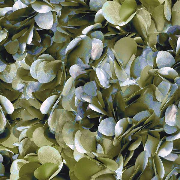 Olive Petals
