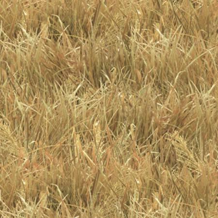 Landscape Medley Wheat Grass 250