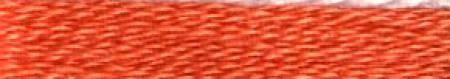 443 Cosmo - Orange Pepper -