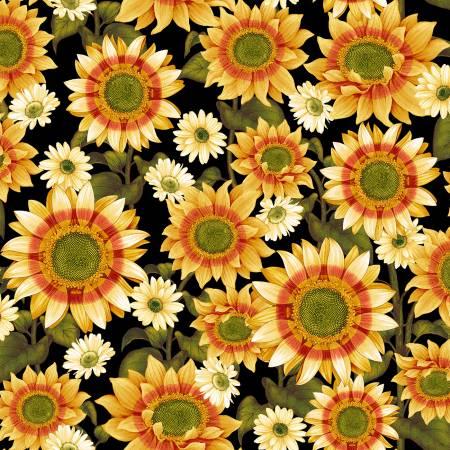 Pumpkin Harvest - Black Sunflower 2662-99
