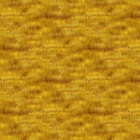 Golden Grass Texture