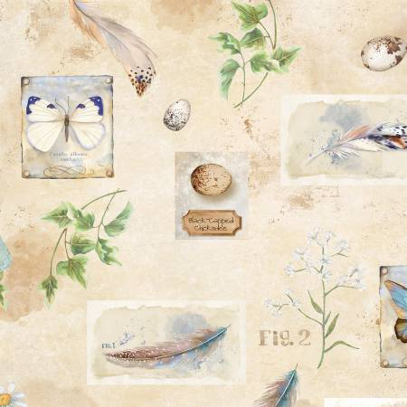 Butterflies, Feathers, and Birds Nests on Ivory:  Nature Study by Nancy Mink for Wilmington Prints