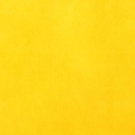 EOB - 1 yard 16 - Palette - Daffodil Solid