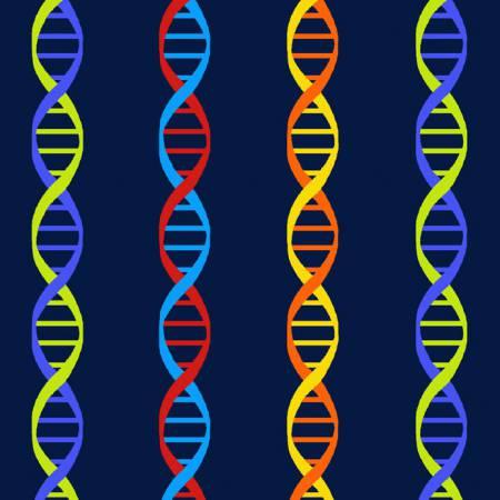 Navy DNA Stripe