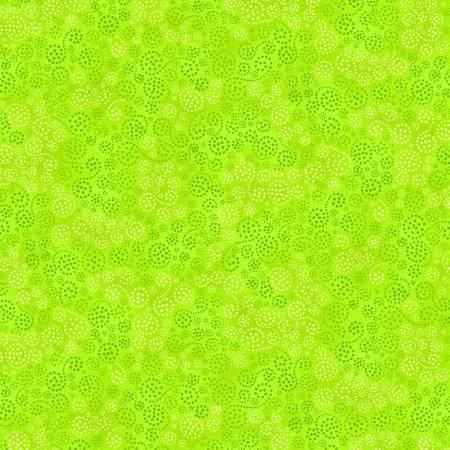Essentials - Sparkles -Lime