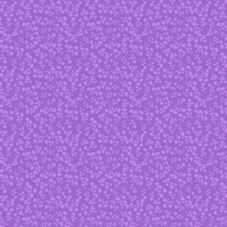 Medium Light Purple Maidenhair Fern