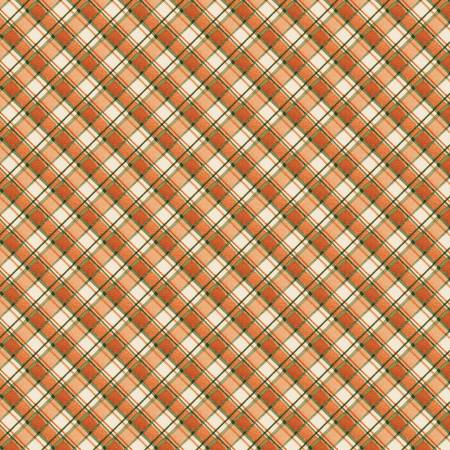 Seeds of Gratitude Orange Diagonal Plaid