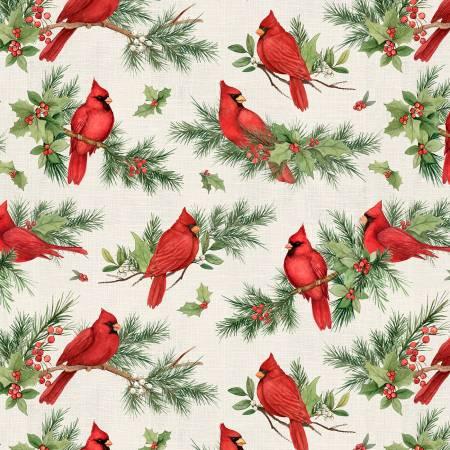Season of Heart, Tan Cardinal