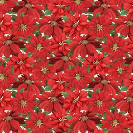Season of Heart - Ivory Poinsettia
